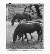 Horse business iPad Case/Skin