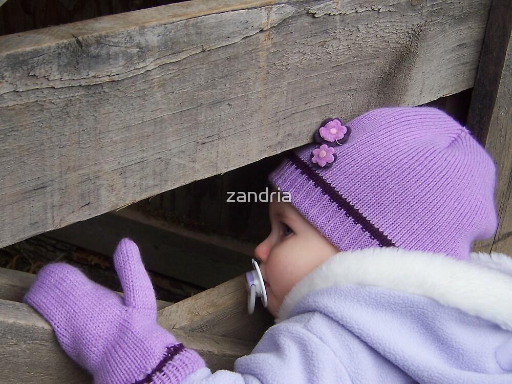 Anybody home? by zandria