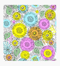 Flowers of Astres and Chrysanthemums drawn zigzag lines Photographic Print