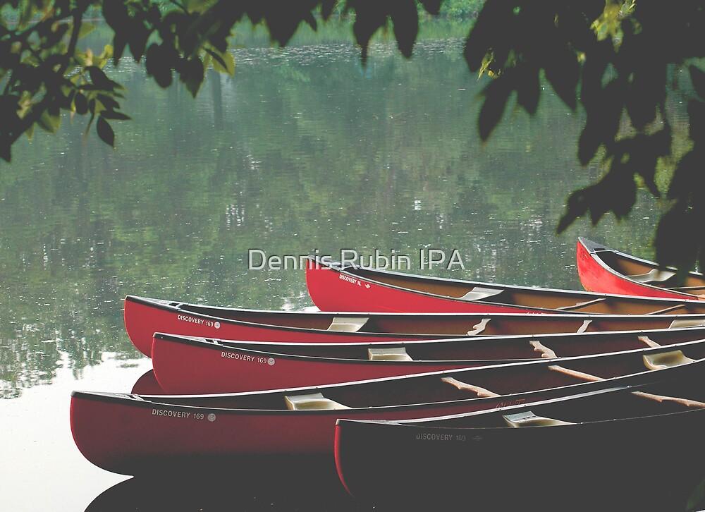 Boats in NJ by Dennis Rubin IPA