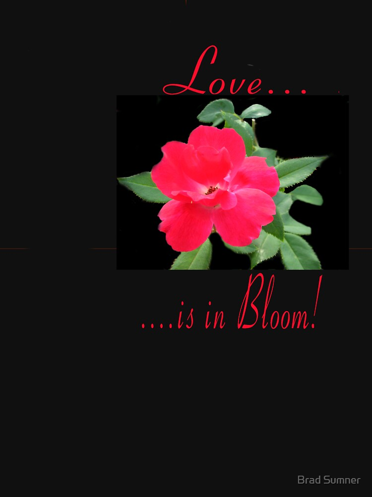 Love in Bloom by bdsumner55