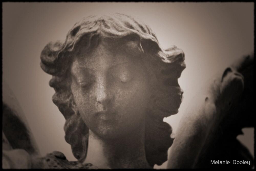 Angel Face by Melanie  Dooley