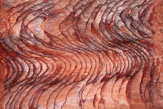 Crimson Tide by Donell Trostrud