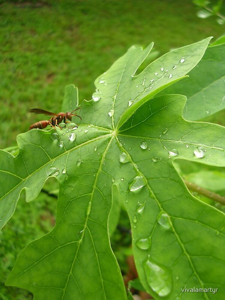 Wasp by vivalamartyr