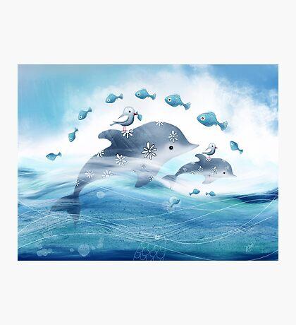 Dolphin Love Photographic Print