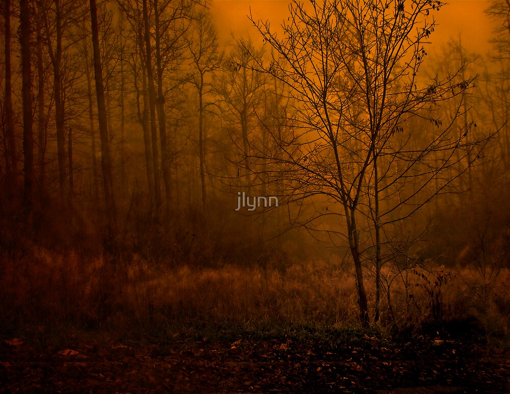 Enter by jlynn