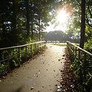 Pathway by saidalauren