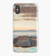 BRUNO LILJEFORS, COMMON EIDERS ON A ROCK iPhone Case/Skin