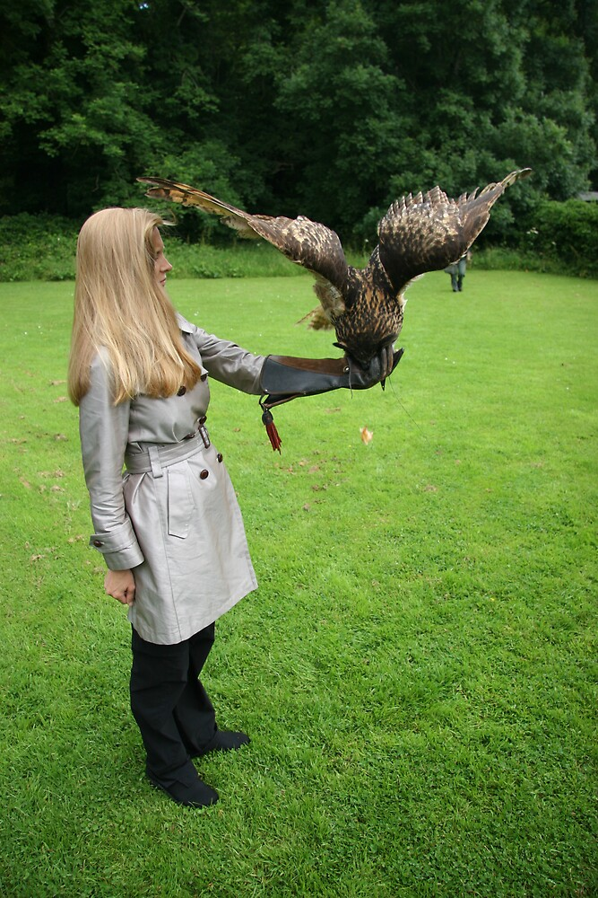 Irish Falconry by Beaner