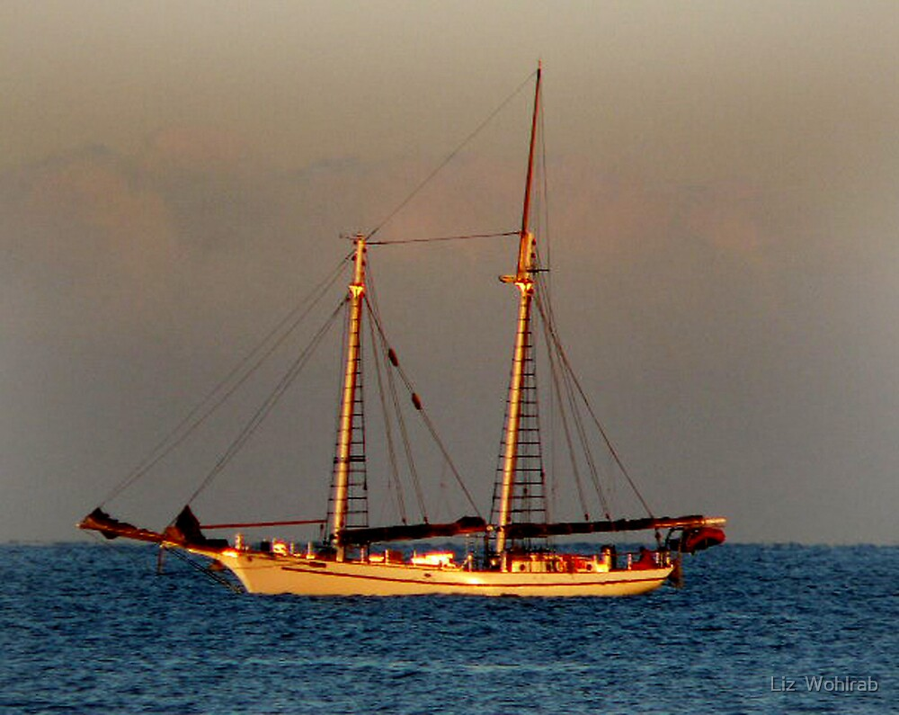 High Sails  by Liz  Wohlrab