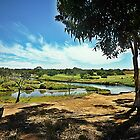 *Werribee River near the Golf Course, Vic. Australia by EdsMum