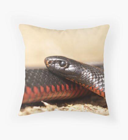 Red Bellied Black Snake - Macro Throw Pillow