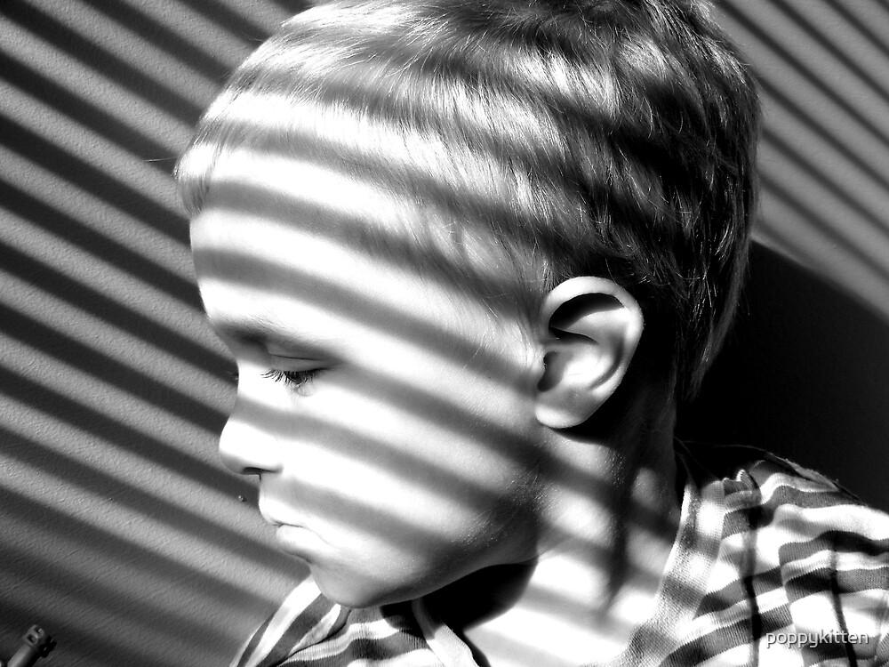 Stripes by poppykitten