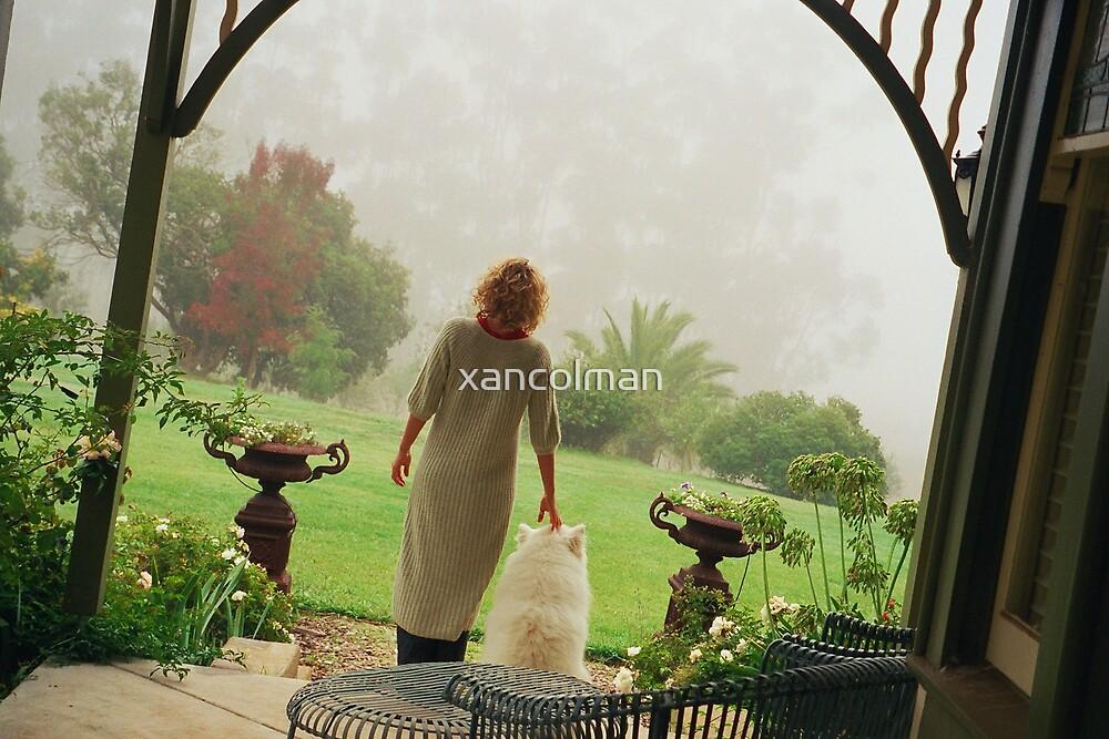 Mist by xancolman