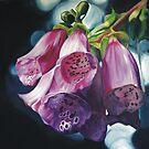 Foxgloves by Melissa Mailer-Yates