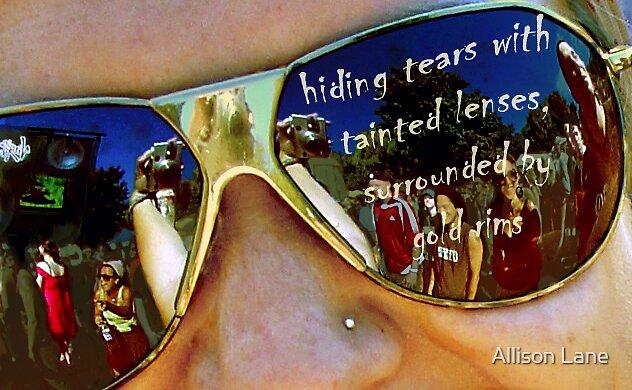Tinted Lenses by Allison Lane