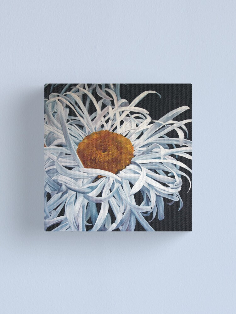 Alternate view of Hairy Daisy Canvas Print