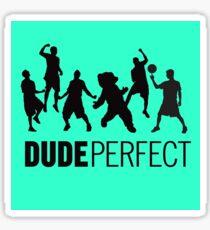 Dude Perfect Sticker