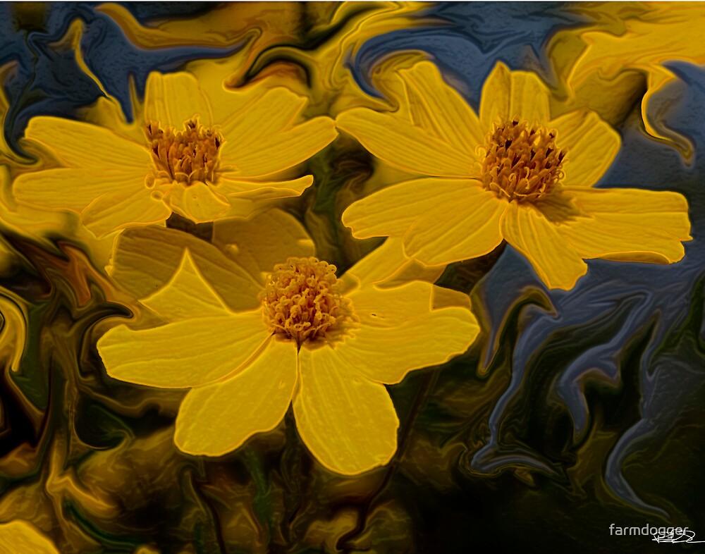 Three Flowers Flowing by farmdogger