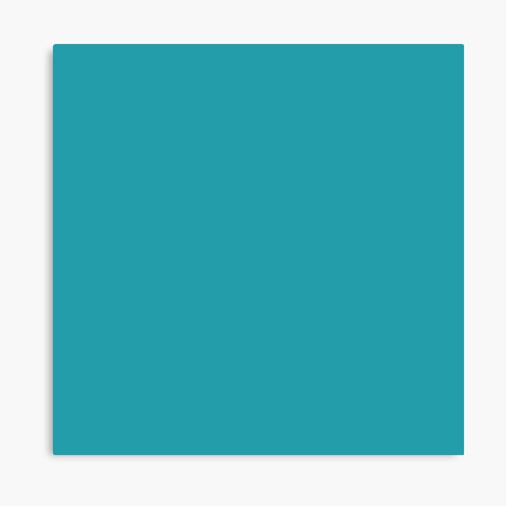 Teal / Light Sea Green einfarbig Leinwanddruck