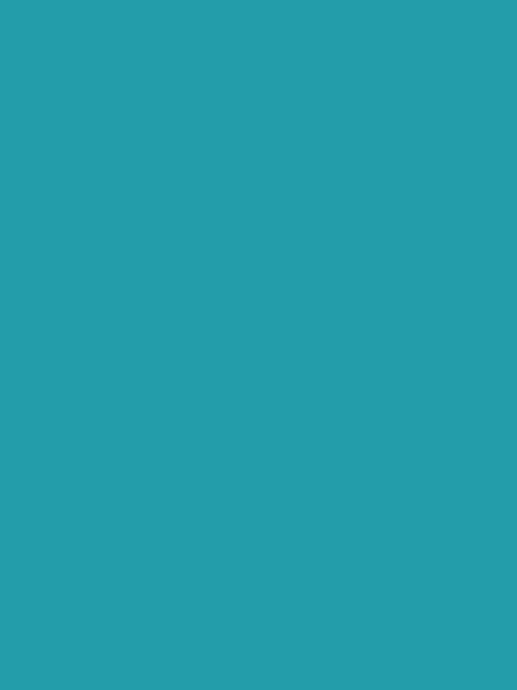 Teal / Light Sea Green einfarbig von patternplaten