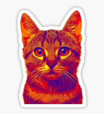 Colorful Cat Face Shirt Sticker
