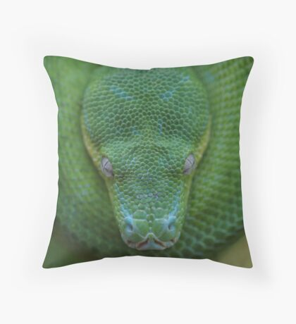 Peace - Green Tree Python Throw Pillow