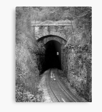 Cowan Tunnel Metal Print