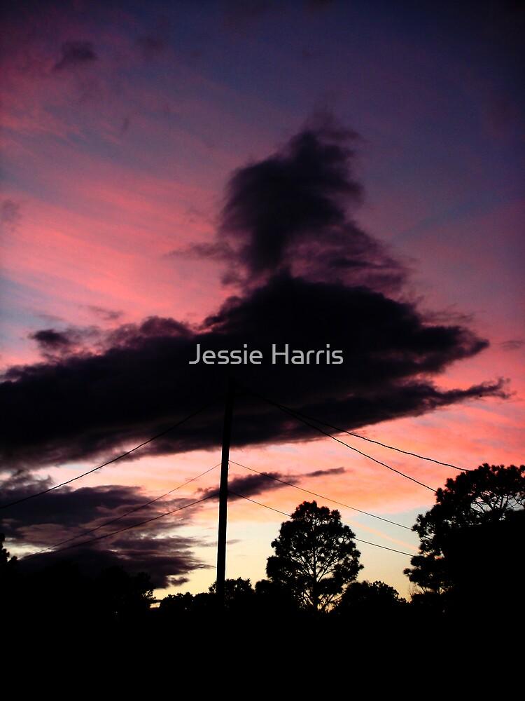 Darkened Sky by Jessie Harris