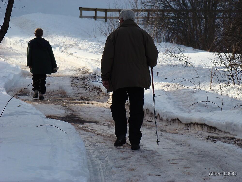 Winter walk by Albert1000