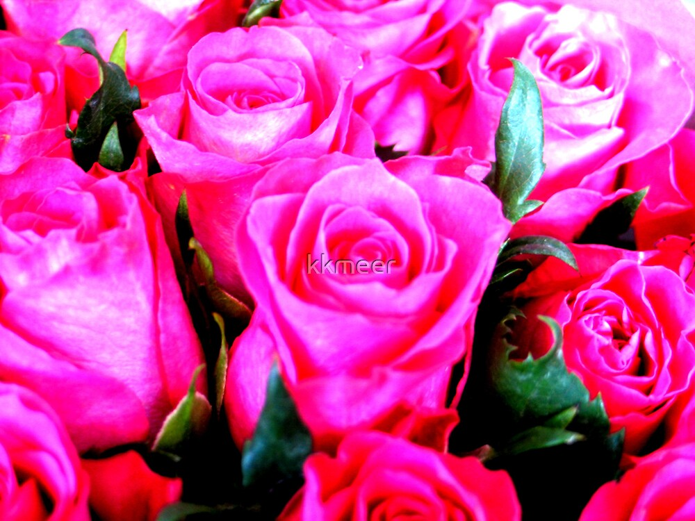 Romance by kkmeer