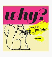 Why ? They Might Be Giants Photographic Print
