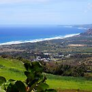 View from Cherry Hill, Barbados by Kurt  Van Wagner