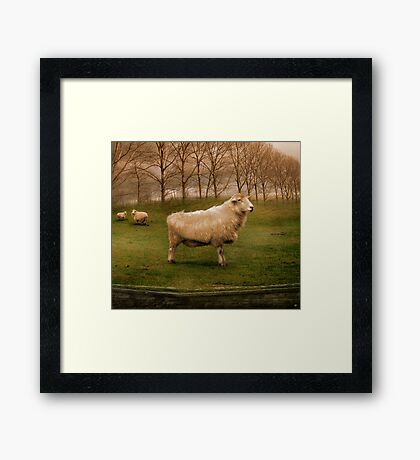 The Pride of Chester Framed Print