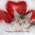 Misty's valentine by sarahnewton
