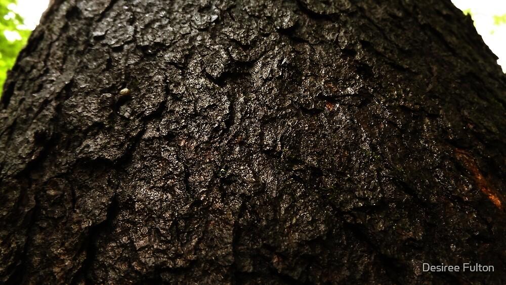 Black Cherry by Desiree Fulton