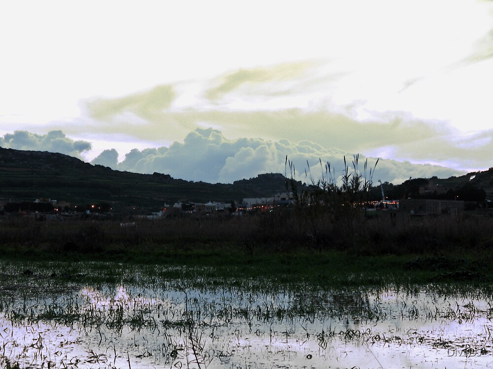 After a flooding rain by DiveDJ