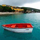 Isha, Island of Curacao by Kurt  Van Wagner