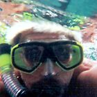 JUST ME SNORKELING  by WhiteDove Studio kj gordon