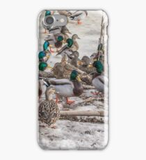 Drakes and Hens iPhone Case/Skin