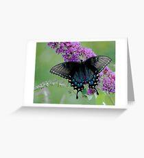 Translucence Greeting Card