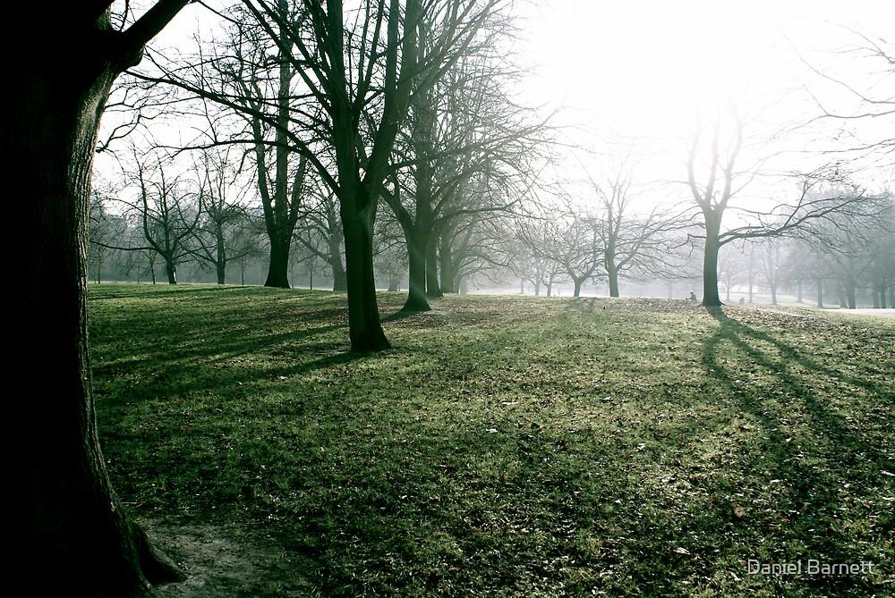 Mystic morning in Hyde Park, London by Daniel Barnett