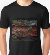 Dried-up River bed  Unisex T-Shirt