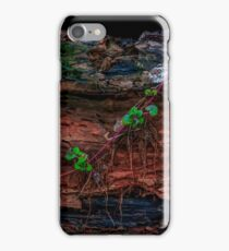 Dried-up River bed  iPhone Case/Skin