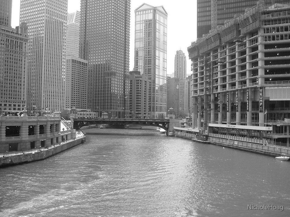 River in Chicago  by NicholeHoag