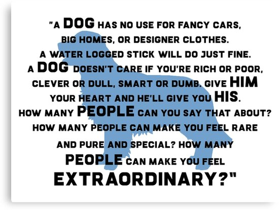 Marley Me Dog Quote Canvas Prints By Quotation Park Redbubble