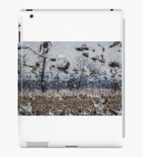 Double Snowstorm iPad Case/Skin