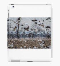 Double Snowstorm iPad Case/Skin