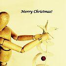 Frohe Weihnachten - Saison Grüße von Evita
