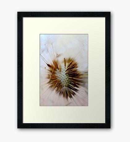 Tangle Framed Print
